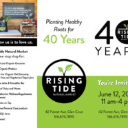 Tri-fold brochure design for Rising Tide